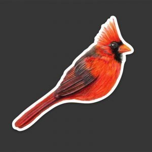 Cardinal Bird Sticker Waterproof Vinyl Decal, Perfect gift for Bird Lovers