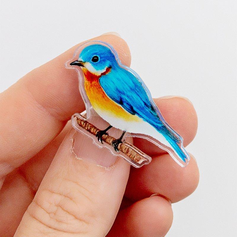 Western-Bluebird-Pin-Artication-Kyle-McKey