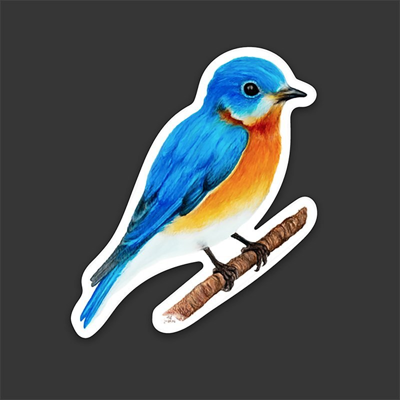 eastern-bluebird-decal-waterproof-vinyl-kyle-mckey